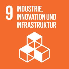 SDG-icon-DE-09__scaled30%
