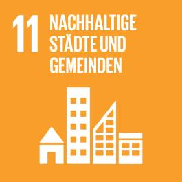 SDG-icon-DE-11_scaled30%