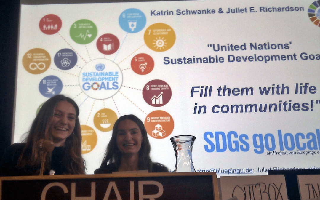 """SDGs go local"" goes global"